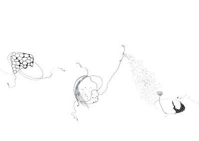 "Drawing by Miriam Morsel Nathan, ©2018 ink, 11 ½"" x 30"""